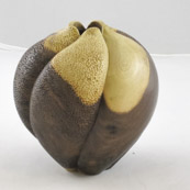 Jim Bumpas - Walnut Carved Hollow Form, Waterlox Finish